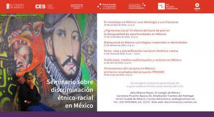 Seminario sobre discriminación étnico-racial en México
